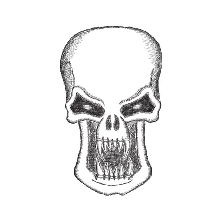 scary face: Vampire Skull in pencil isolated on white background