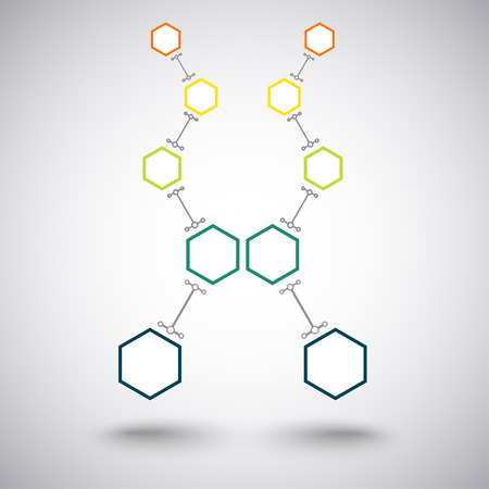 subsidiary: Concept of communication, two branches of five colored connected cells. Vector Graphics