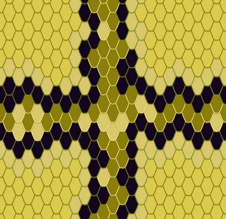 king cobra: Abstract background - king cobra.