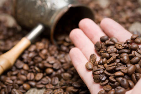 grist: Man hold freshly roasted coffee beans on hand. Shallow depth of field. Focus on hand
