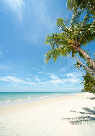 Thailand. Scenic view on island Koh Chang. Relaxing under a palm trees on loneliness beach  photo