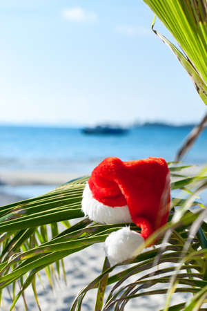 Red Santas hat hanging on palm tree at the tropical beach. Christmas in tropical climate concept