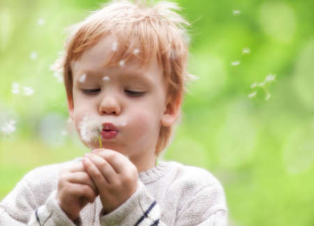 Young blond kid in the meadow blowing wishes on dandelion seed
