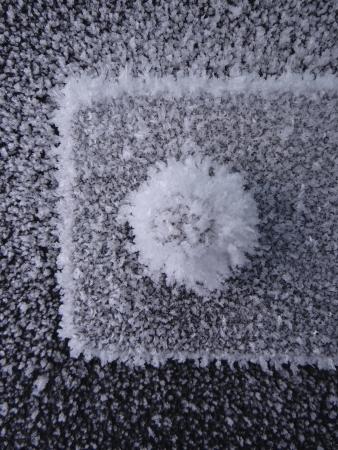 door bolt: Frosted puerta perno
