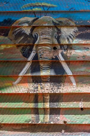 tusks: A mural of an elephant with big tusks from the front is shown on the overlapping planks of a wooden shack in the sunshine.