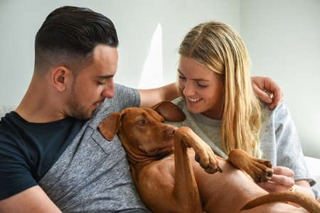 hungarian pointer: Close-up of smiling couple holding Hungarian Vizsla Stock Photo