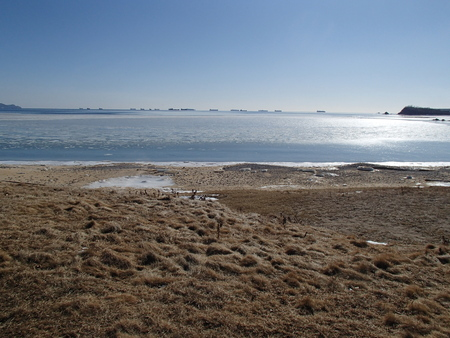 Many anchored ships in calm winter sea. Sandy beach, ice floes and blue sky.