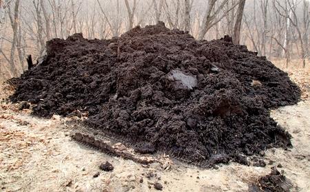 Heap of black soil for landscape gardening Stock Photo
