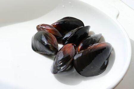 Delicious marine molluscs mussel Mytilus trossulus on white background closeup Stock fotó