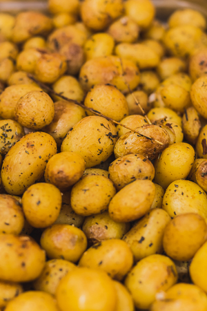 mini potatos Standard-Bild