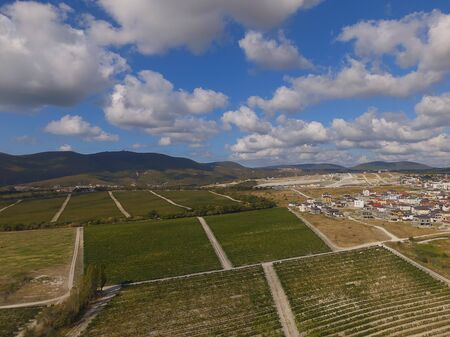 Aerial shot of green hills with vineyards in Novorossiysk city, Russia