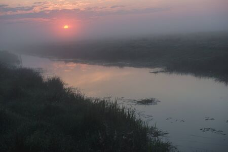Beautiful foggy sunrise in Ukraine. Fog on the field. Untouched nature