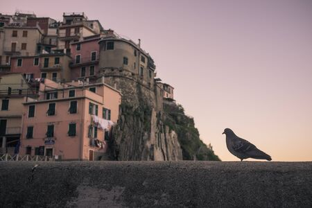 the italian city of Manarola