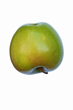 granny smith apple: Granny Smith apple (Malus domestica Granny Smith). Hybrid between Malus domestica and Malus sylvestris. Image of single apple isolated on white background