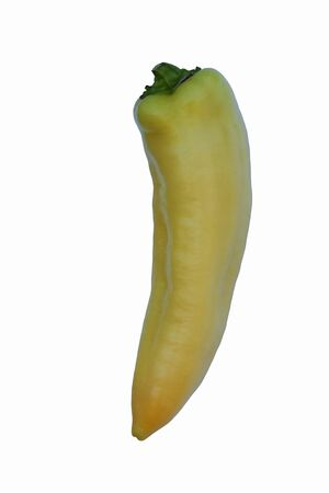 capsicum plant: Banana hot pepper (Capsicum annuum Banana Pepper). Called Yellow Wax pepper and Banana chili also. Image of single pepper on white background Stock Photo