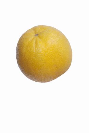 バレンシア オレンジ (バレンシア柑橘類 x sinensis)。シトラス マキシマ (ザボン) と温州ミカン (みかん) のハイブリッド。白い背景に分離された単一 写真素材