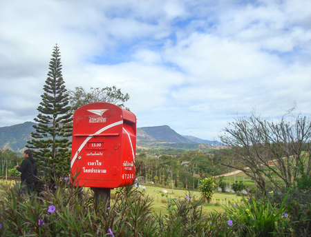 Postbox at viewpoint touristic and pine tree on hill mountain, Thailand.