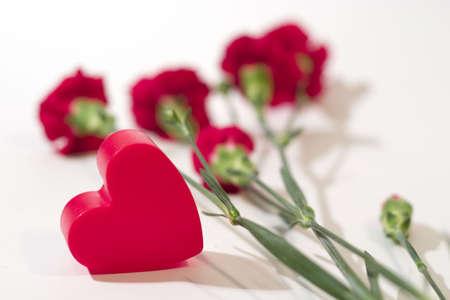ecard: Cuore rosso di plastica con garofano. Focus � il cuore, i fiori sono fuori fuoco