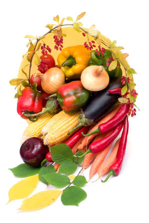 barbery: colorful still-life of fresh autumn harvest