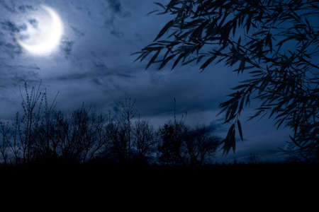 alight: autumn night forest alight with bright moon in clouds Stock Photo