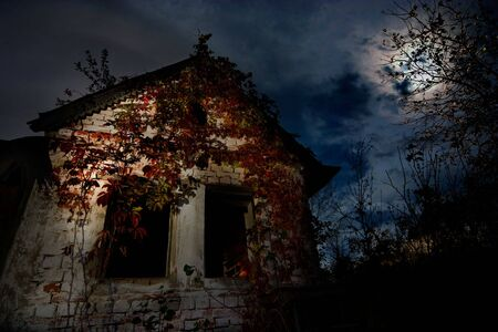 Image of Haunted house - good background for halloween cards photo