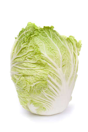 nappa: image series of fresh vegetables on white background - nappa cabbage