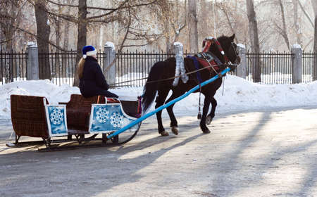 horse sleigh: Winter recreation - sleigh with horse and teamster