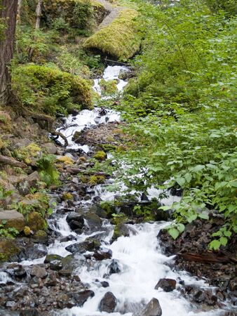 slick: Slick Rocks and Flowing Stream in Northwest US Stock Photo