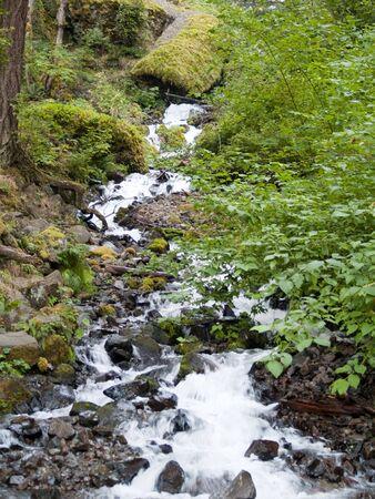 geschniegelt: Slick Rocks und Fluss Stream in Nordwesten USA Lizenzfreie Bilder
