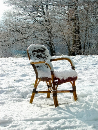 Wicker chair on a snowy meadow  Netherlands photo