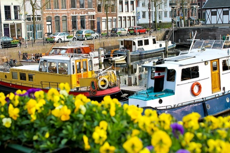 gorinchem: Flowers on the streets of Gorinchem. Netherlands