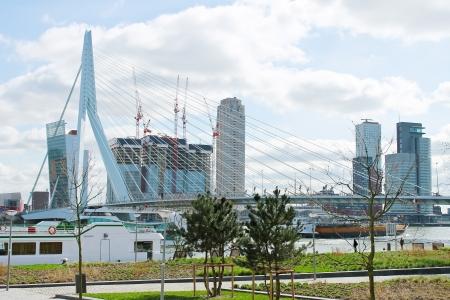 Rotterdam köprü Erasmus yakın park ve dolgu. Hollanda Stok Fotoğraf - 14561692