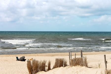 duna: Verano playa en los Pa�ses Bajos