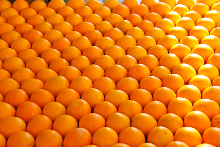 Sale of ripe oranges on the market  photo
