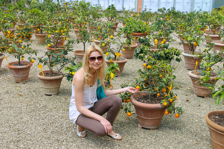fruitful: Girl near the potted plants in nursery citrus