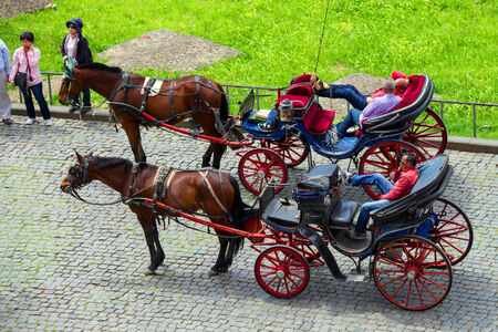 the coachman: ROME, ITALY - MAY 04, 2014: Coachmen sitting on chairs, pulled by a horse, waiting for tourists to the area near the Colosseum in Rome, Italy