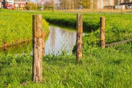 dutch typical: Green meadows and canal at sunset in the Netherlands Stock Photo