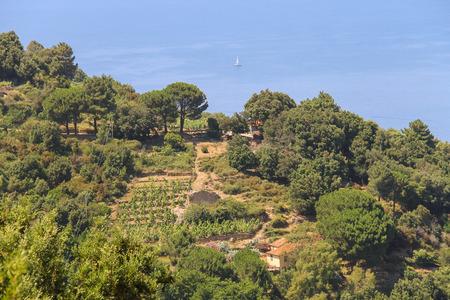 tyrrhenian: Coast of Tyrrhenian Sea on Elba Island, Italy.