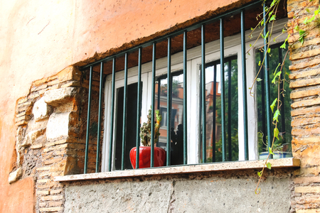 behind bars: Pot with a flower on the window behind bars Stock Photo