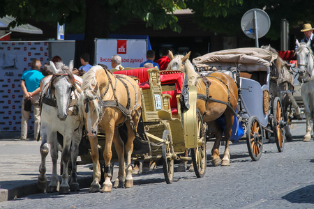 brougham: Lviv, Ukraine - July 5, 2014: Tourist carriage waiting for passengers on the streets in historic city center