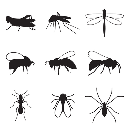 Set of silhouette icons on a theme insect Ilustracja