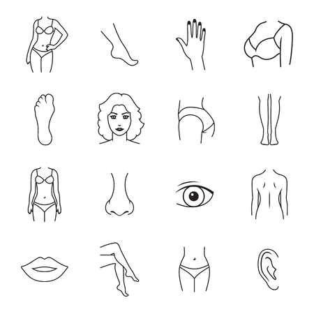 Human body parts icons. Outline icons on a white background