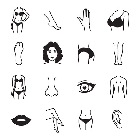 Human body parts icons