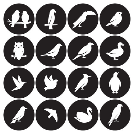 Birds icon set Vector illustration.