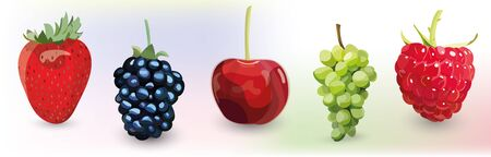Set of fruits and berries on light coloured background. Stock Illustratie