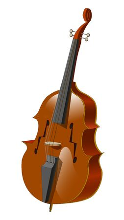 acoustic plucked musical instrument - double bass