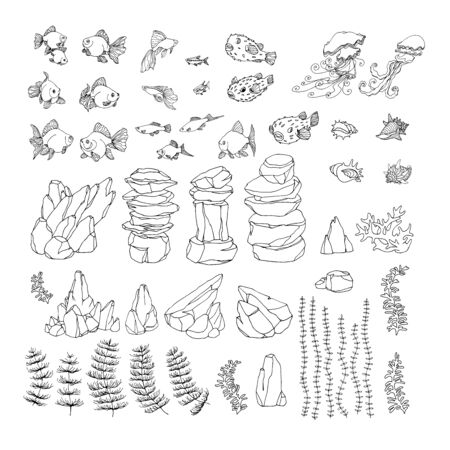 set of walnut branches, nuts in shell, kernels, element of decorative ornament or pattern, vector illustration with black contour lines isolated on white background Ilustração