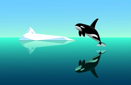 black young killer whale jumps out of the water, seascape with white iceberg, specular water surface with reflections & blue sky, color vector illustration in cartoon & clip art style Ilustrace