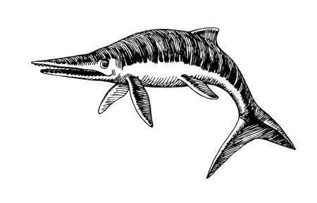 prehistoric reptile of the Jurassic period, giant ichthyosaur with fins, sea raptor, vector illustration with black ink lines isolated on a white background in a hand drawn style Vettoriali