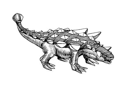 prehistoric Jurassic reptile, herbivorous ankylosaurus dinosaur with a plate armor & mace on its tail, vector illustration with black ink lines isolated on a white background in a hand drawn style